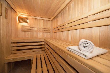 location vacances ski sauna