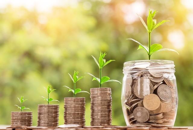 cash-flow-investir